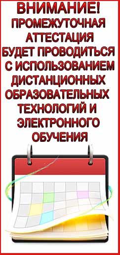 виджет сайт-2